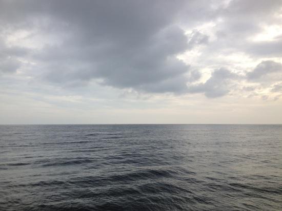 20130225-105854.jpg
