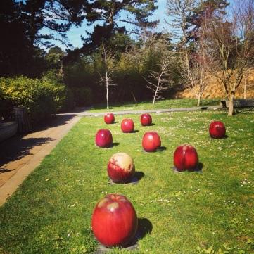 Sculpture Garden, apples