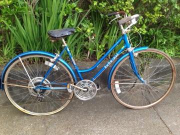 Meet my new bike, Skylar