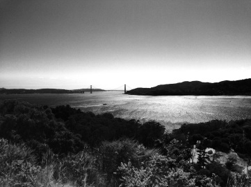 View from Angel Island