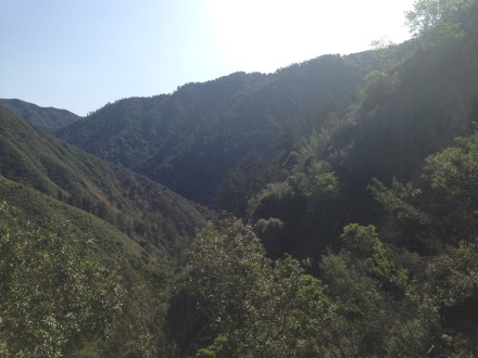 Ventana Wilderness