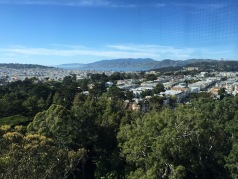 View from De Young Observatory Tower